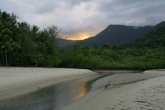 Daintree National Park, Australia : Tourist Guide